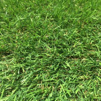 Pasto Sintético en Rollo Grass Bamboo 10x1 m